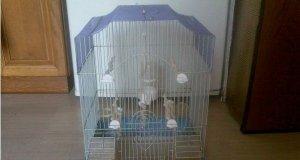Κλουβί για Καναρίνια-Παπαγαλάκια
